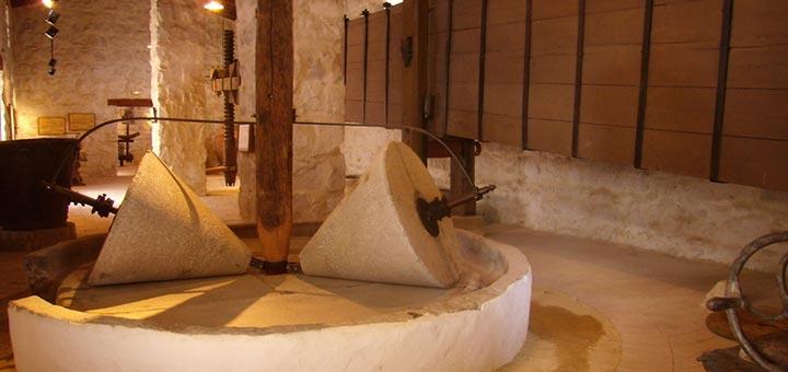 Museo de la Cultura del Olivo Jaén