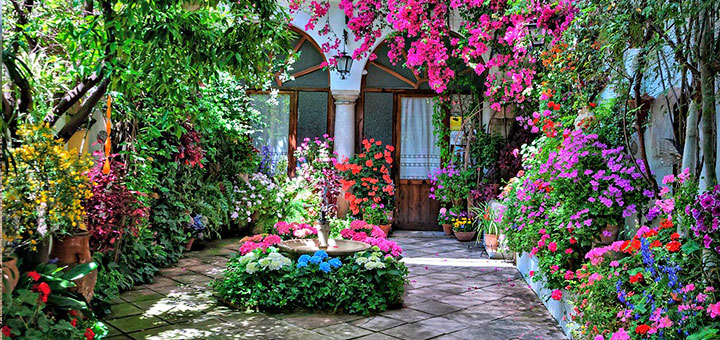 Los patios